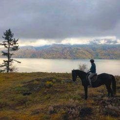 autumn-riding-vancouver-pferd-ausritt-canada-480x480