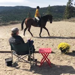 dressage-jumping-lesson-horseriding-clinique-summerland-bc-780x780
