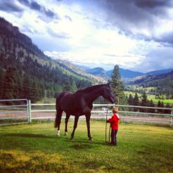 pony-rides-kelowna-summerland-riding-lesson-childrens-horseback-riding-780x780